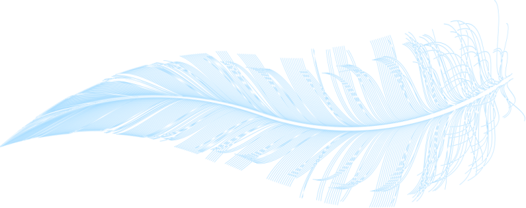 Graphic illustration of a feather